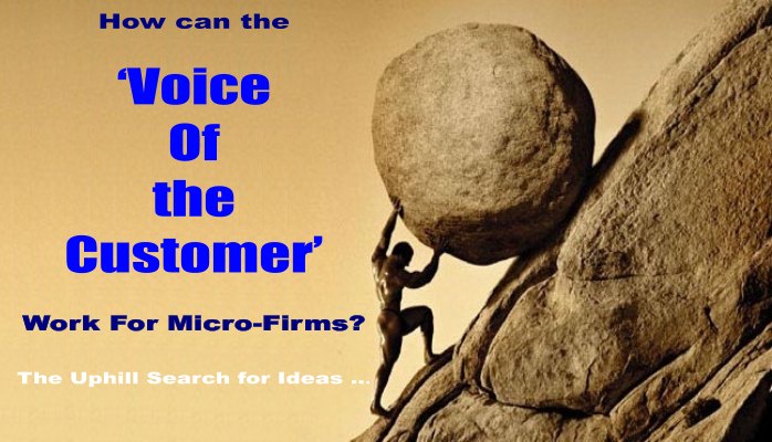 How Can VoC Work For Micro Firms?